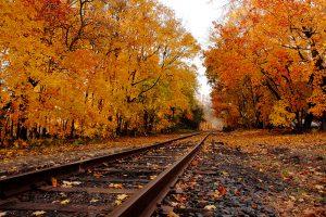 fall scene of a railroad track in newton nj